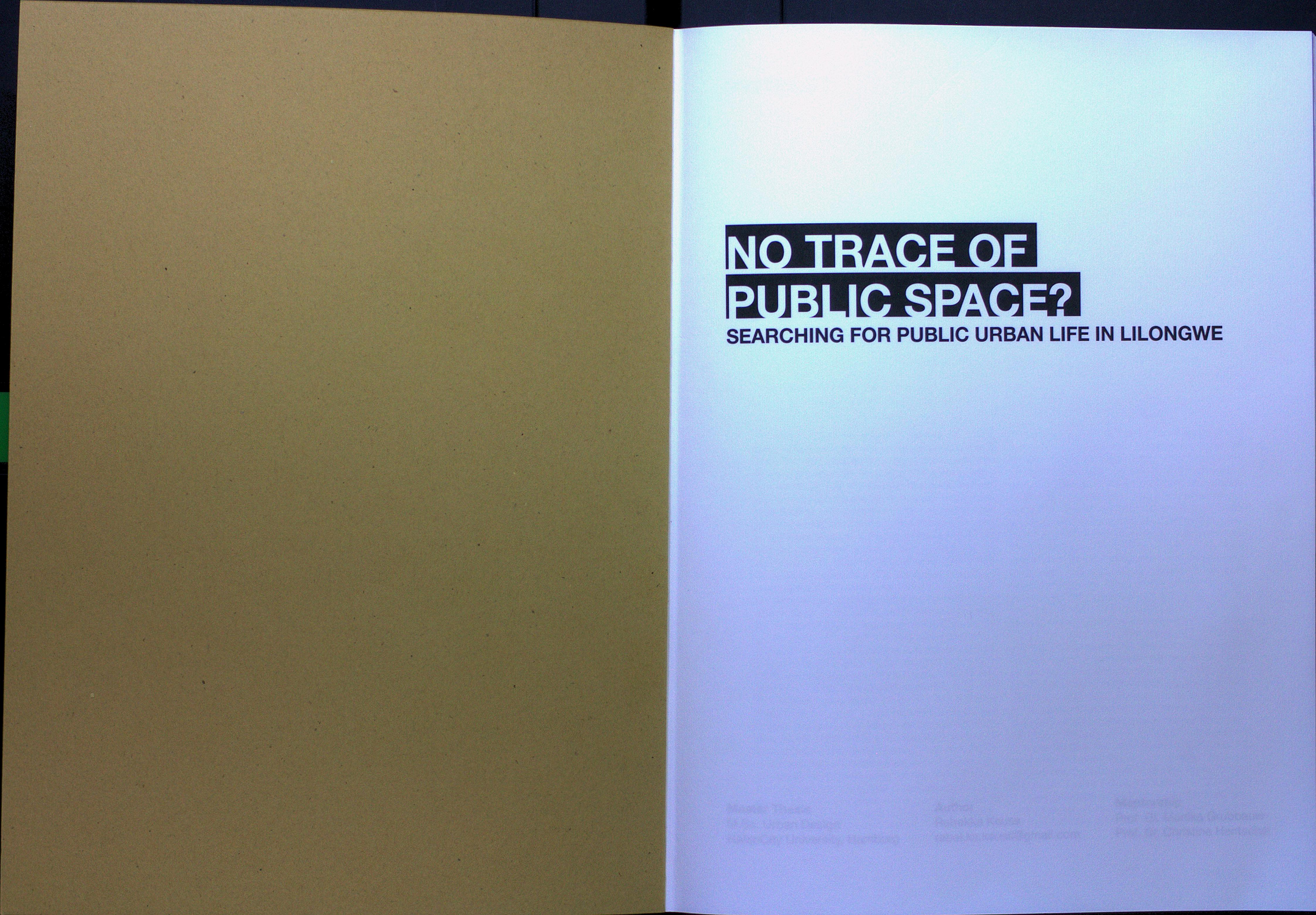 http://ud.hcu-hamburg.de/projects/master-theses/no-traces-of-public-space-2018